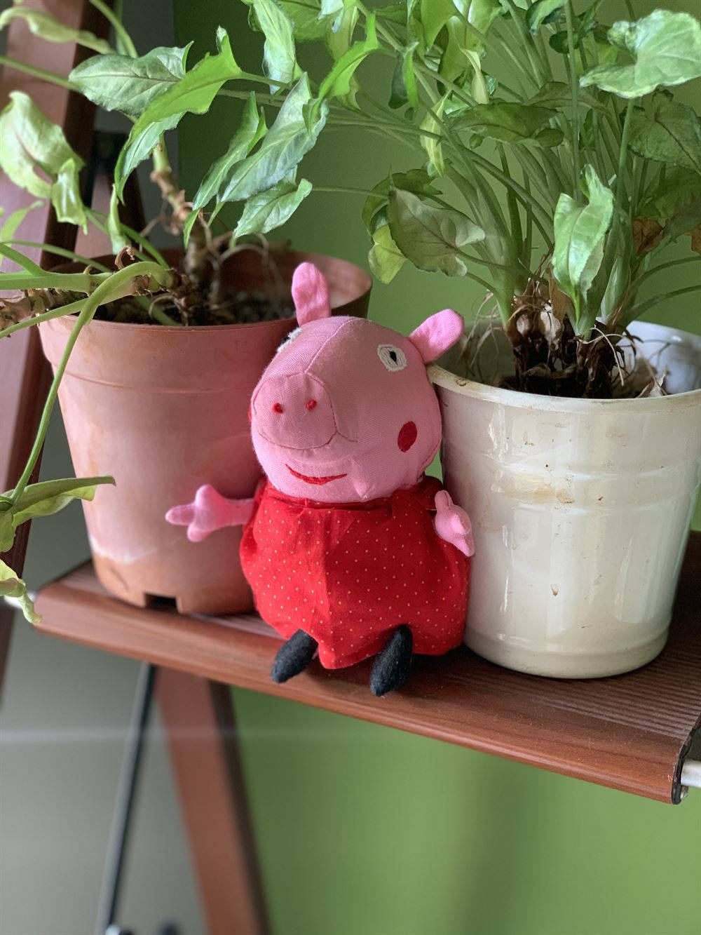 Picture of Peppa Pig Soft Toy