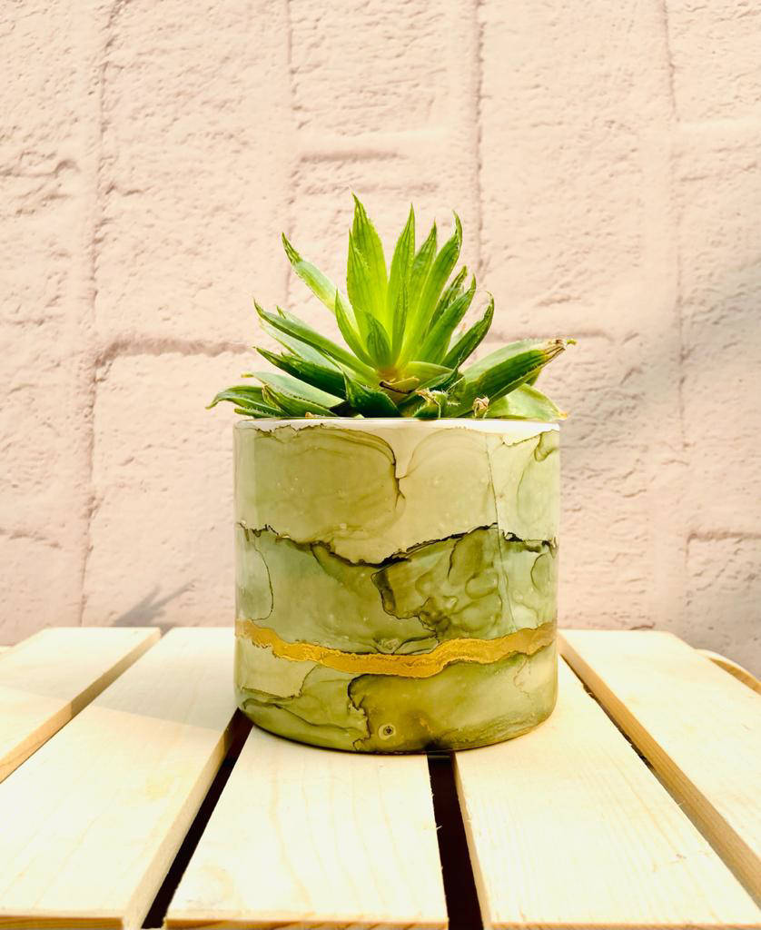 Picture of Resin Plant Holders